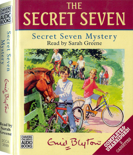 a story about sarah and the secret seven